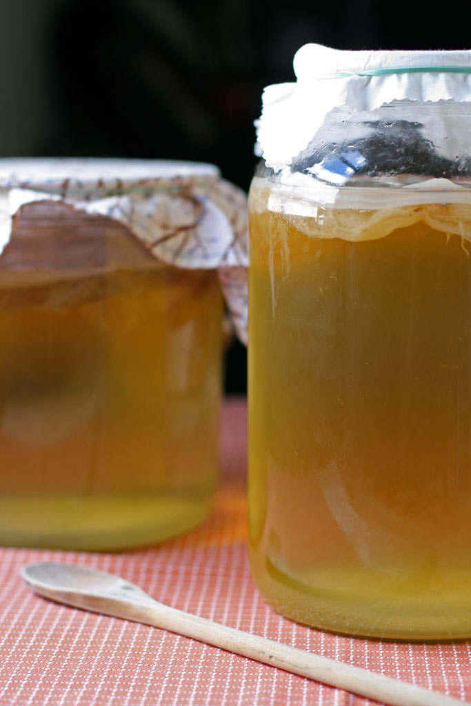 """Booch. Kombucha. Whatever you call it, you've probably heard about it. In this post, you'll learn how to brew kombucha - the popular """"crunchy"""" drink."""