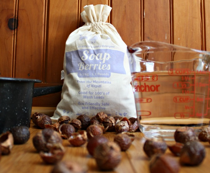 Looking for a truly non-toxic cleaner? Have you ever tried soap berries (or soap nuts as some call them)? Here's why you should love them plus how to use them.